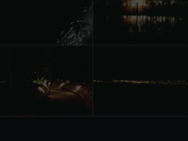 Animi Vultus - Fragments