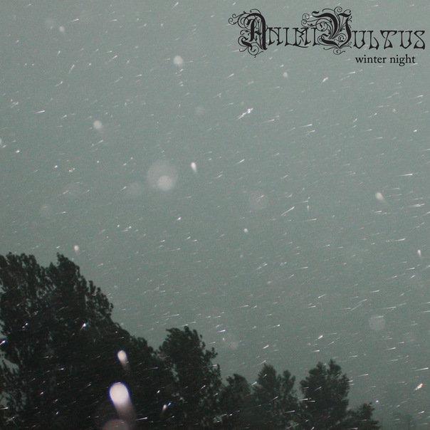 Winter night (EP) by Animi Vultus
