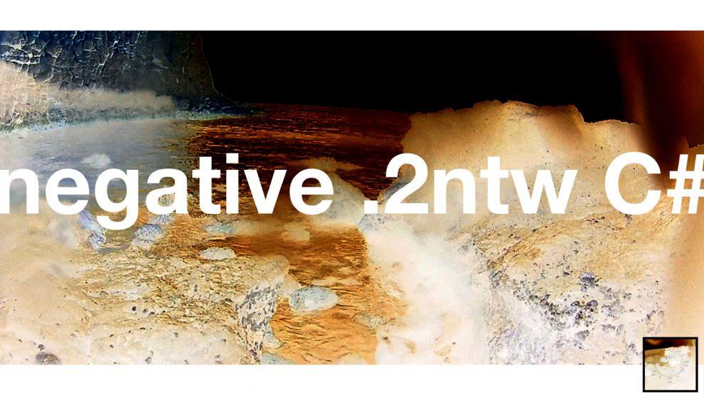 negative .2ntw C#